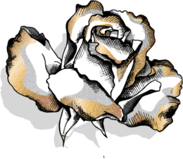 golde flower medium 2
