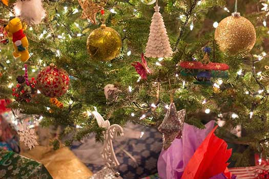 christmas-tree-erin-butler-fi