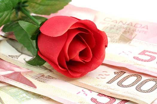 rose-money-erin-butler-fi