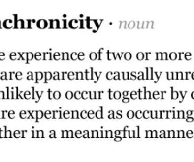synchronicity-erin-butler